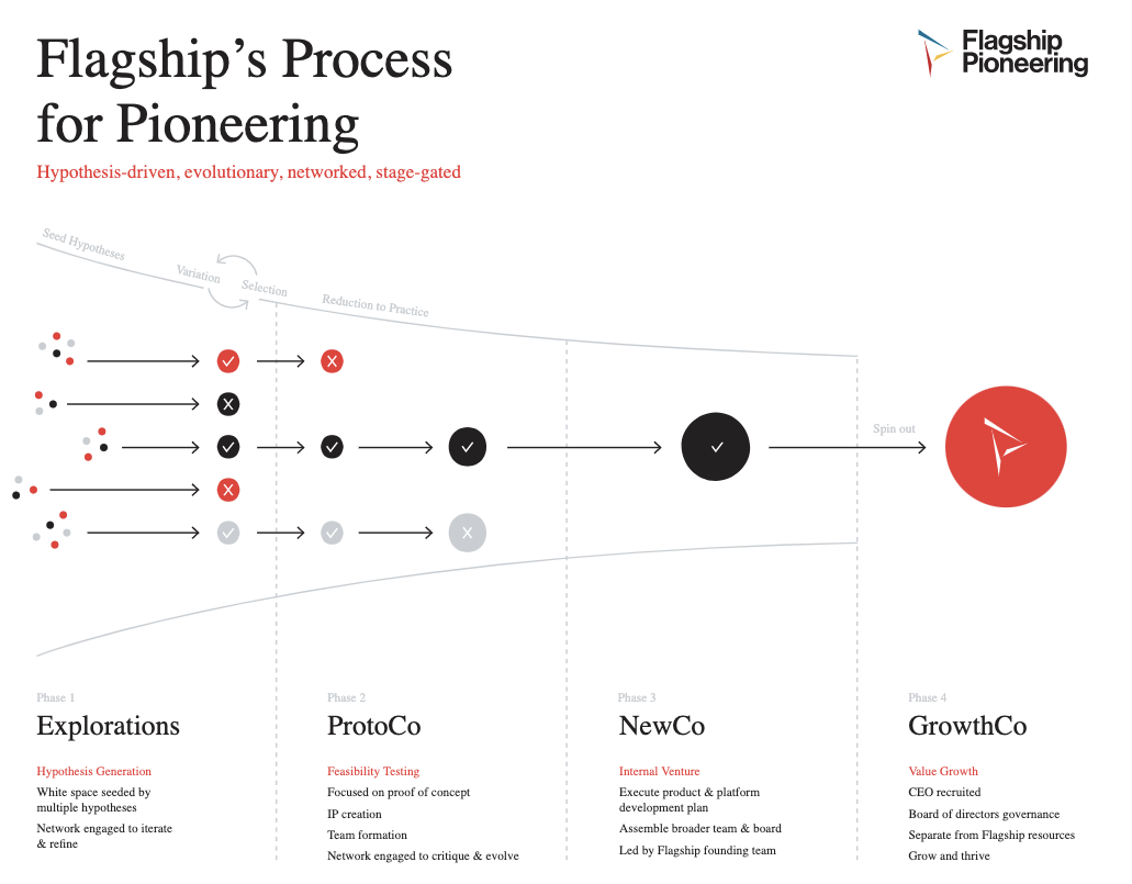 Flagship's process for pioneering