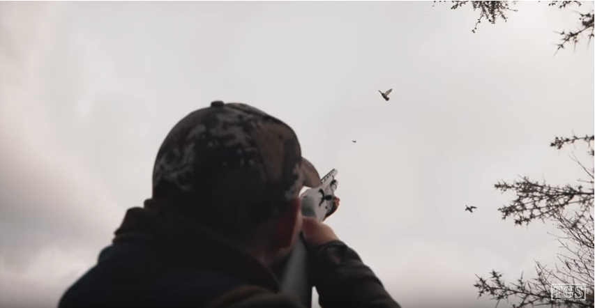 shooting at pigeons