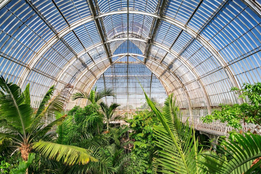 Palm House at Kew Botanic Gardens