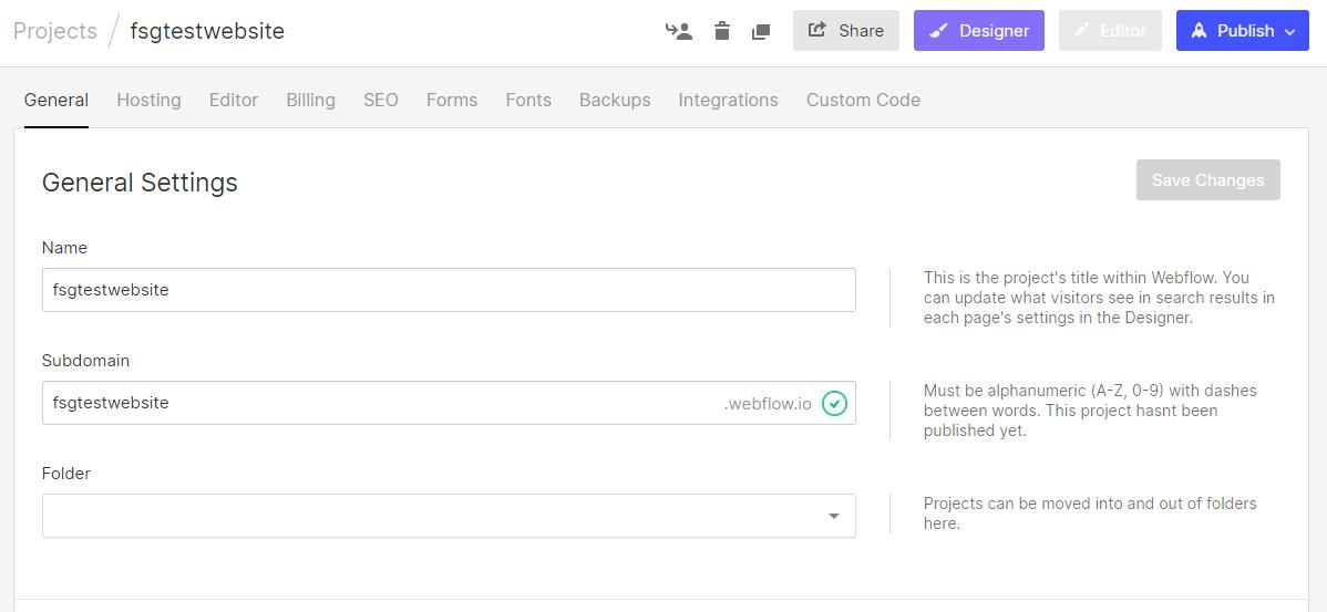 webflow domain options