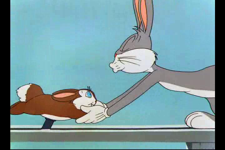/Users/romulosoaresbrillo/Desktop/bugs bunny bunny.jpg