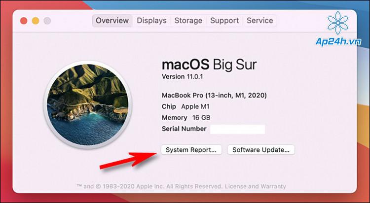 Truy cập mục báo cáo hệ thống trên macOS 14