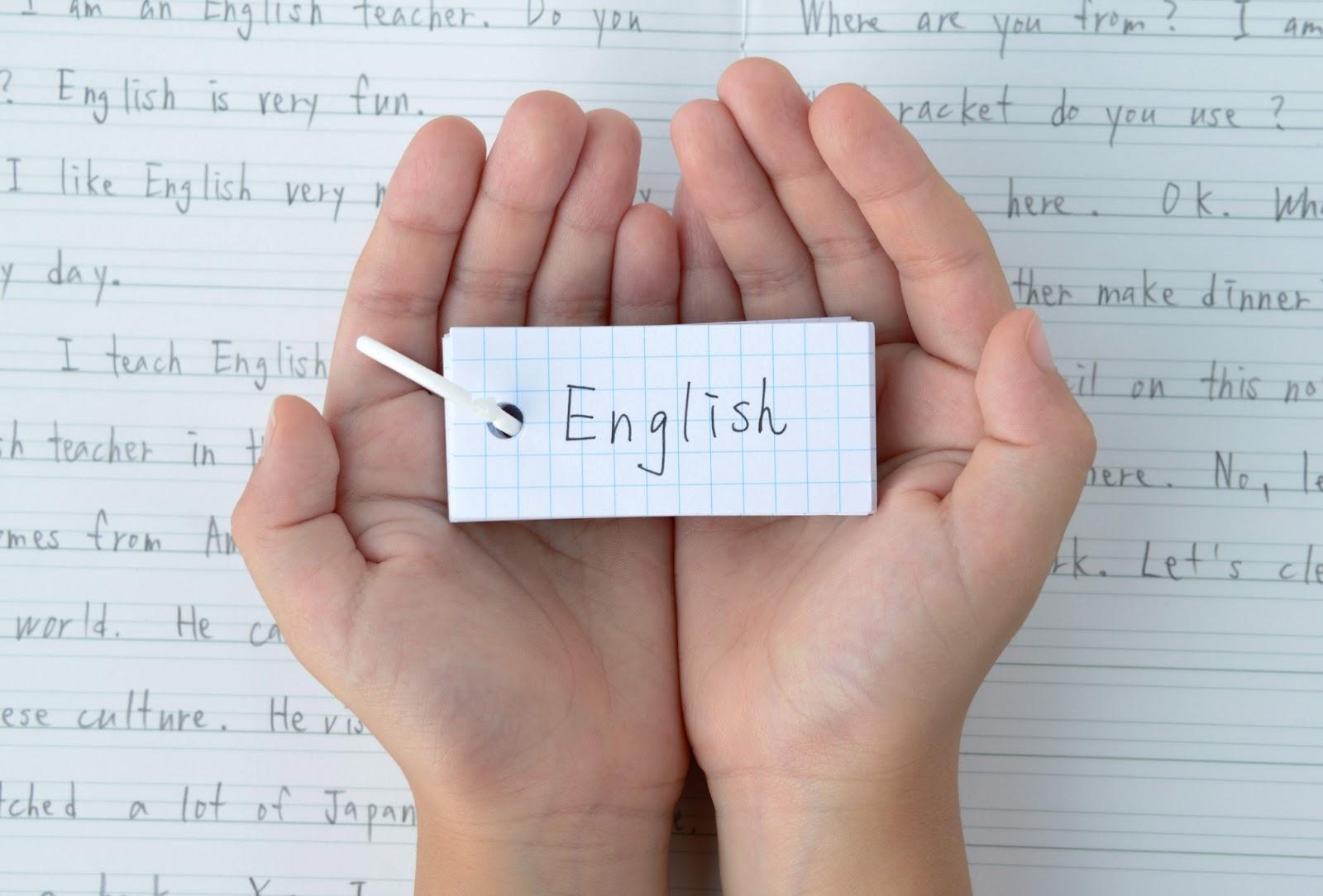 Estudante admirando suas anotações em inglês, feitas em suas aulas de inglês para iniciantes.