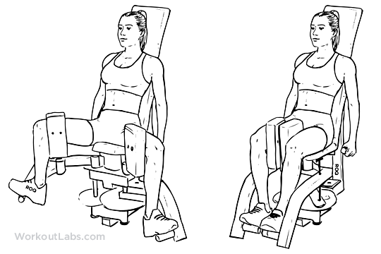 Thigh_Adductor_Inner_Thigh_Machine2.png