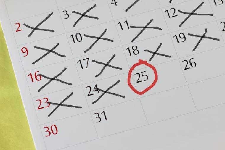 丸とバツが書かれたマンスリーカレンダー