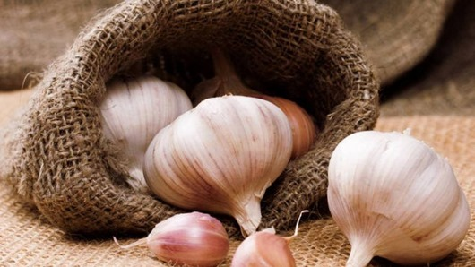 garlic health 1