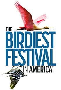 bird-festival