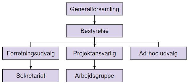 Vedtægter Organisation