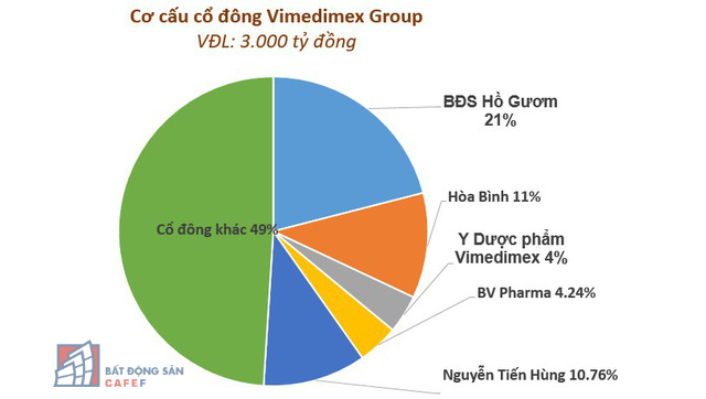 Ông chủ đứng sau đại gia bất động sản mới nổi Vimedimex Group là ai? - Ảnh 2.
