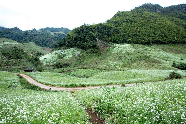 Mộc Châu – nơi những nàng tiên xuân ngự trị - ảnh 7