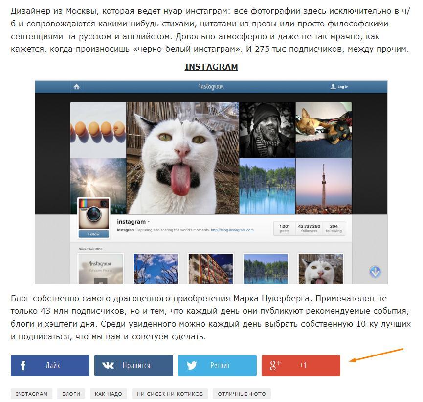 большие социальные кнопки блог Ротапост.jpg