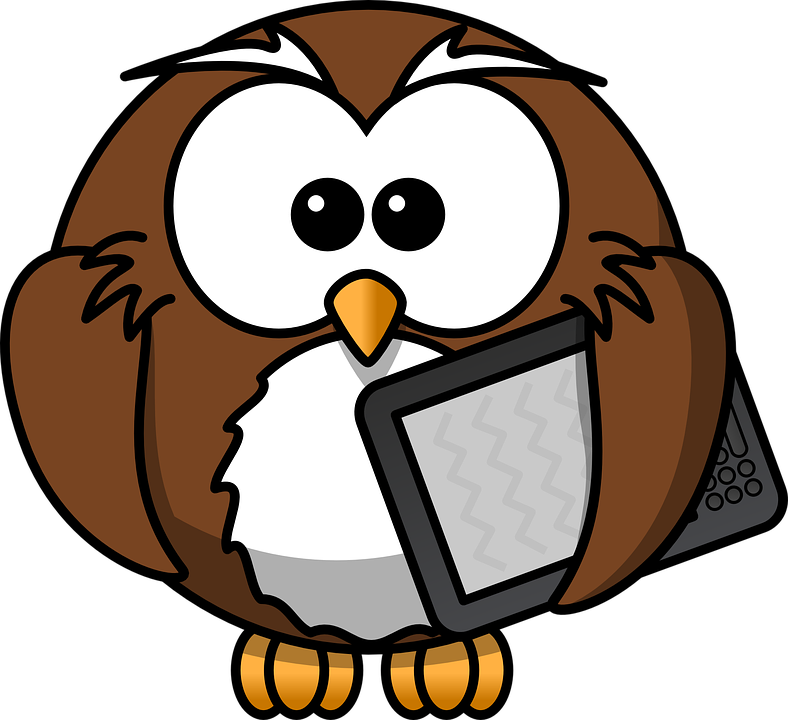 Owl, Animal, Bird, Book,