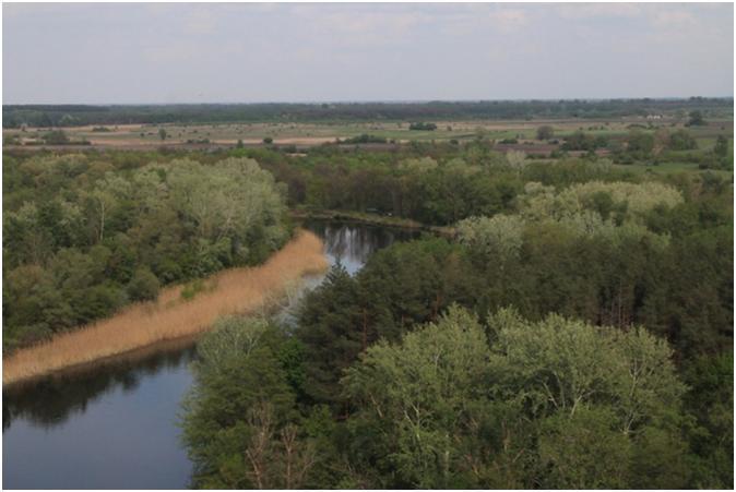 Річка Ятрань біля Перегонівкі. Сучасний вигляд