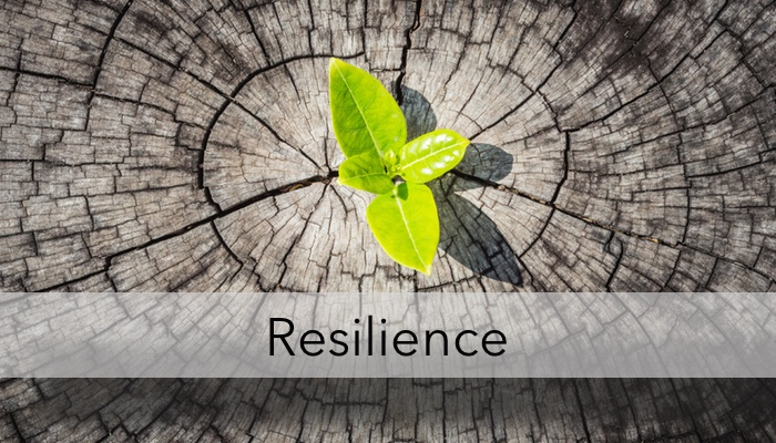 Quotes About Resilience