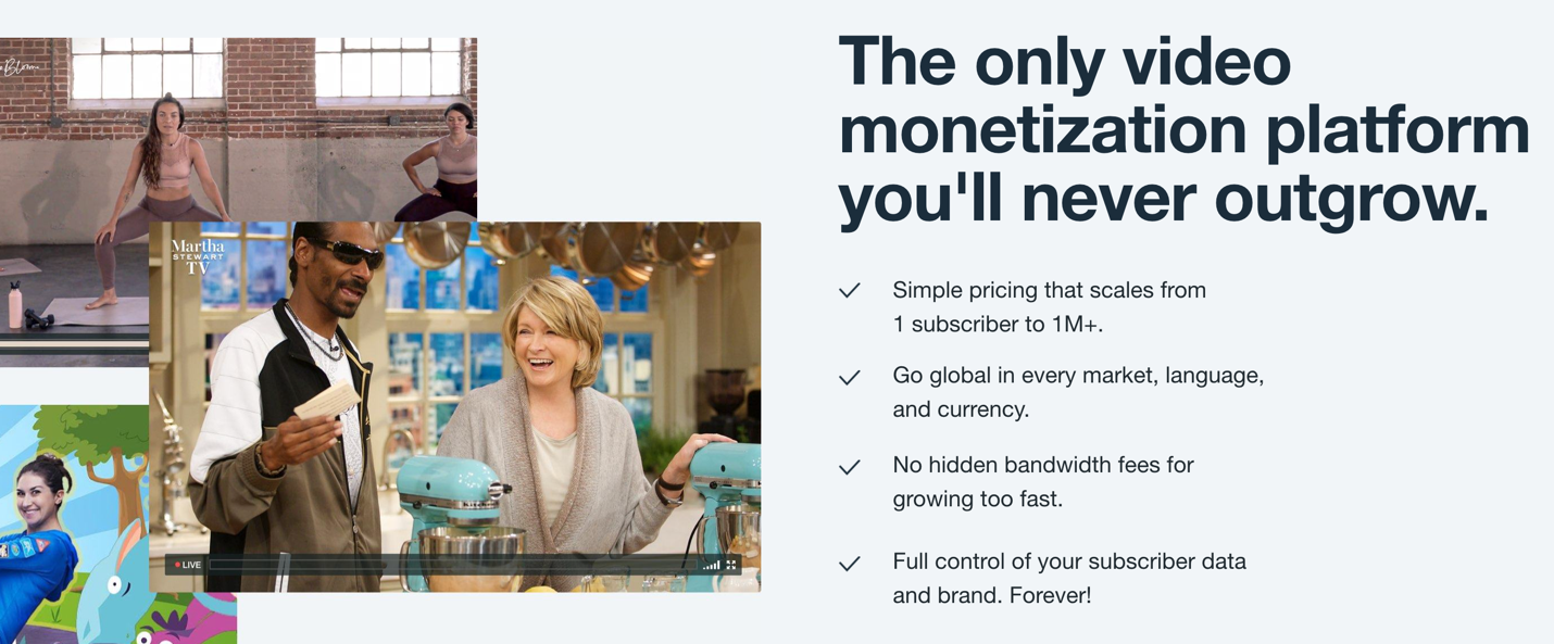 Video monetisation