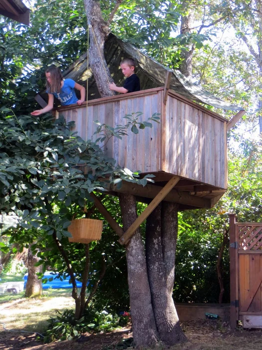 Tree House Plans & Design 3: The Little Fort