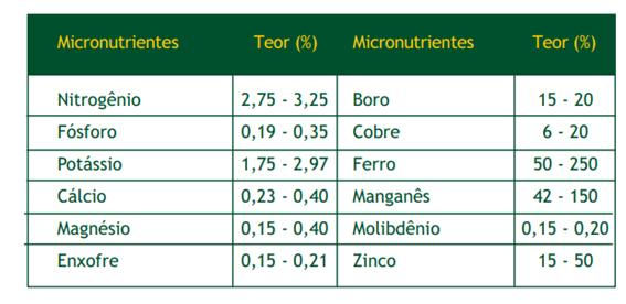 Teores foliares de nutrientes considerados adequados para a cultura do milho