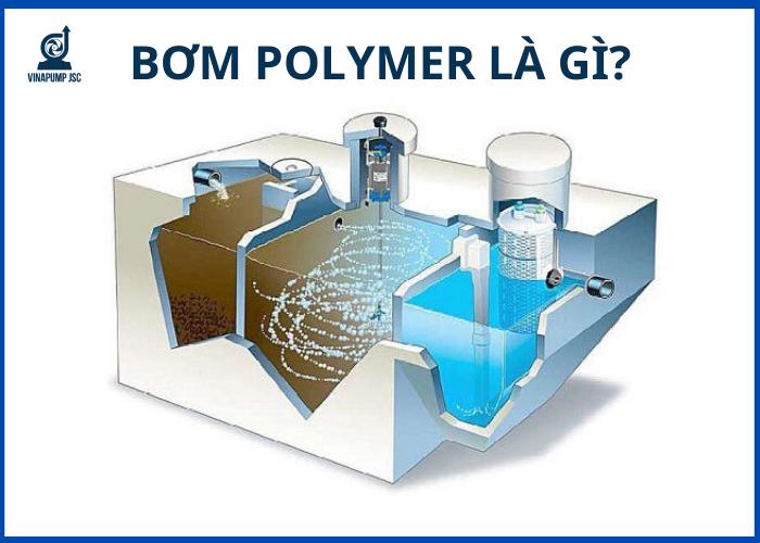bom-polymer-la-gi