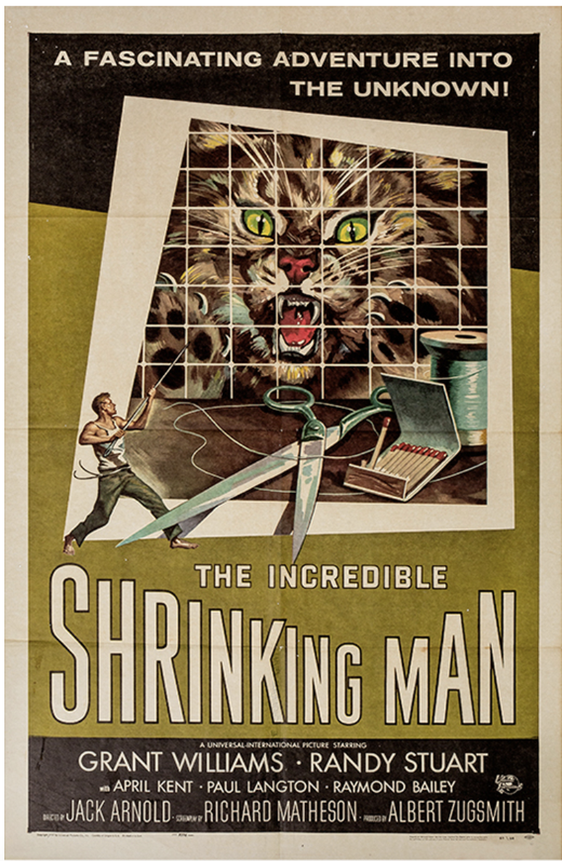 Shrinking Man film poster