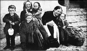 Image result for Irish immigrants