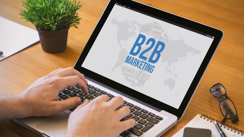 caracteristicas negocio tipo business to business