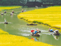 Tam Coc Ninh Binh