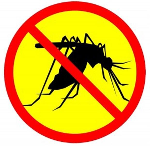 Dịch vụ phun thuốc diệt muỗi tại nhà Hà Nội