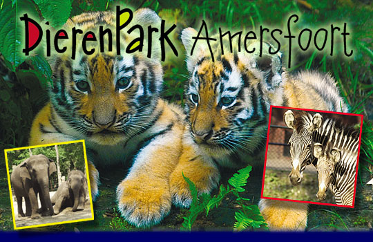Gezellig naar Dierenpark Amersfoort