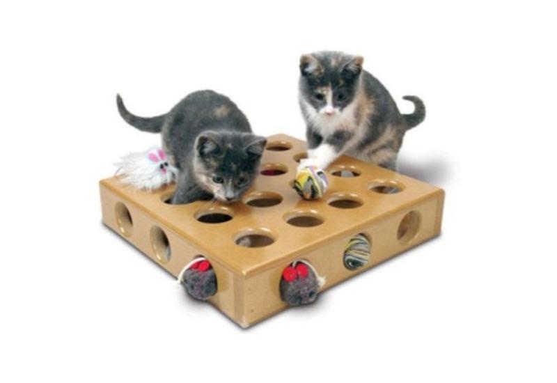 SmartCat Peek-a-Prize Toy Box Review