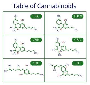 MEDICAL CANNABIS: THE SCIENCE BEHIND CANNABINOIDS 1