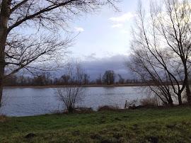 Heute im Nationalpark bei Gartz (Bild A.M. - für mehr Bilder auf das selbe klicken.)