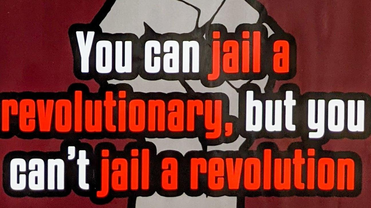 May be an image of text that says 'You can jail a revolutionary, but you can' t jail a revolution'