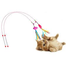 ผลการค้นหารูปภาพสำหรับ ของเล่นแมว
