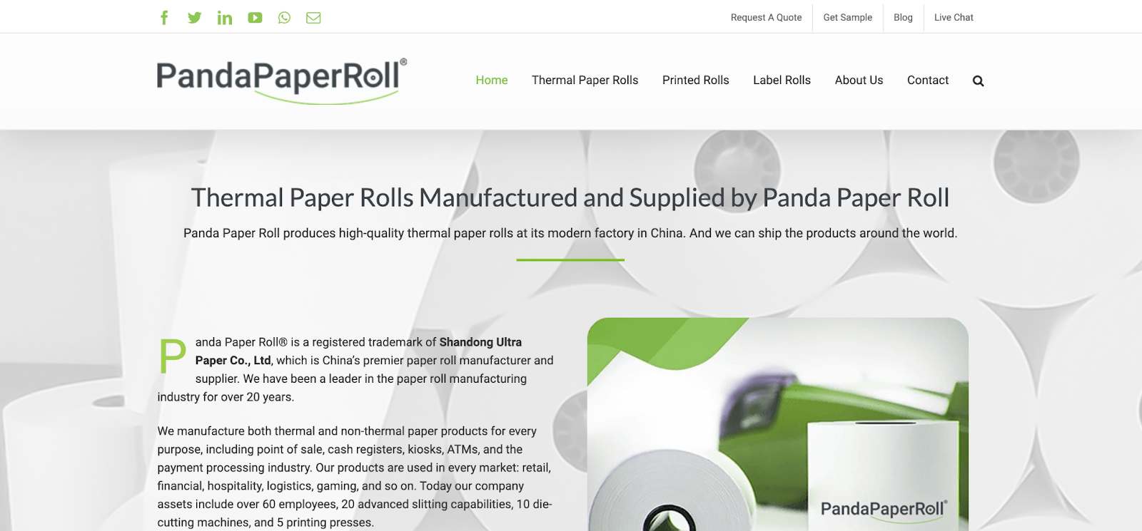panda paper roll avaada theme wordpress website
