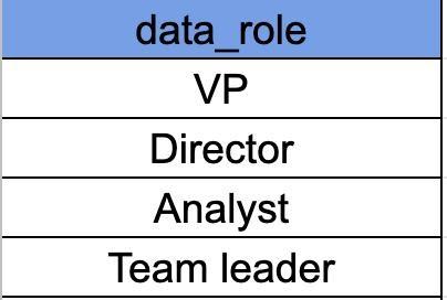 עמודת data role בעלת 4 תפקידים לפי הסדר הבא משמאל לימין : VP, Director, Analyst, Team Leader