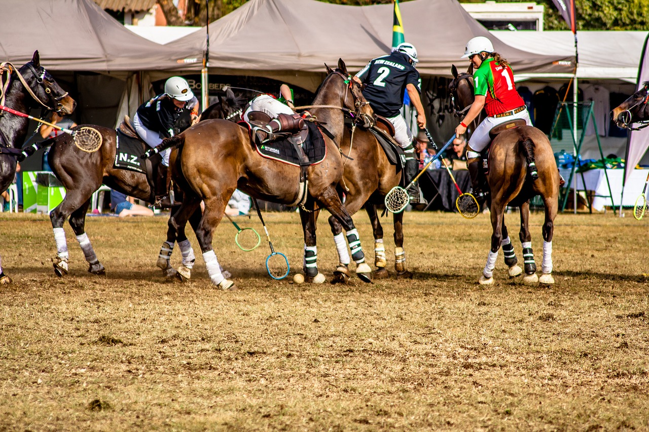 picture of polo players going after a ball during a polo game,