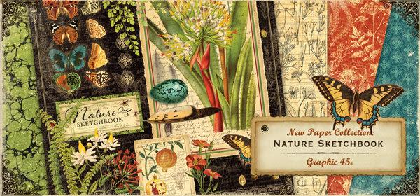 Nature Sketchbook Graphic 45 Banner.jpg