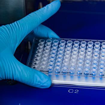 Kết quả hình ảnh cho givaudan microbiome process
