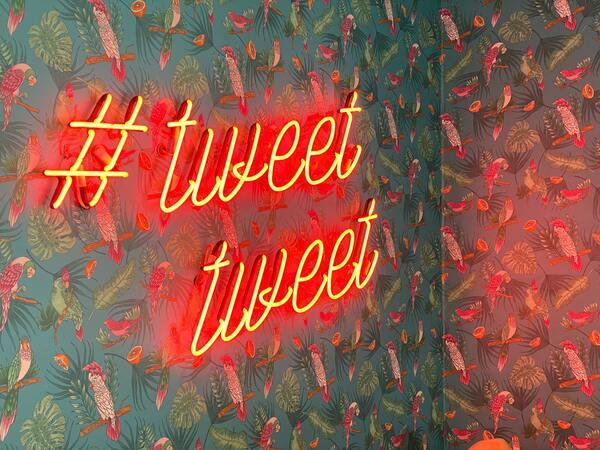 """Foto de uma parede com um papel de parede de tema tropical com palavras da cor neon escrito """"#tweet tweet"""""""