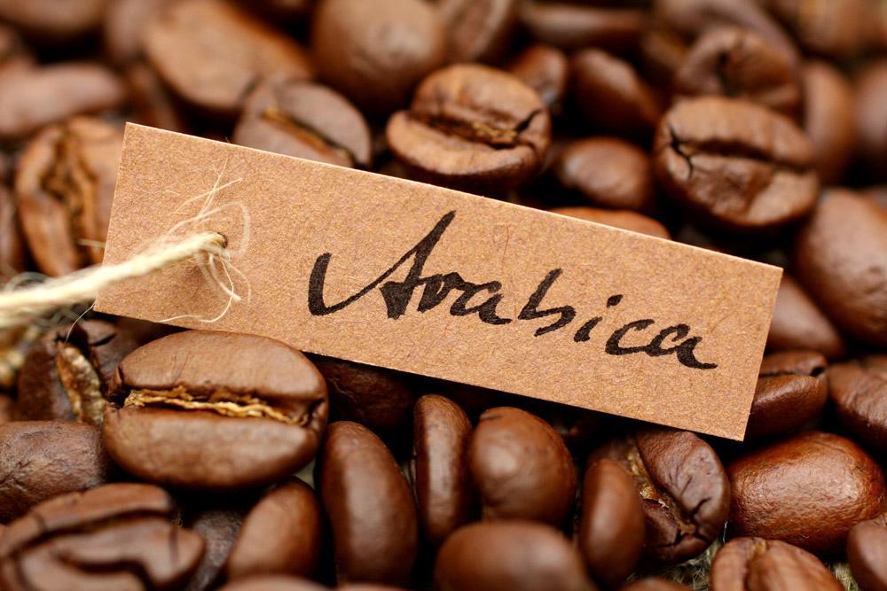 Các loại cà phê ngon – cà phê Arabica