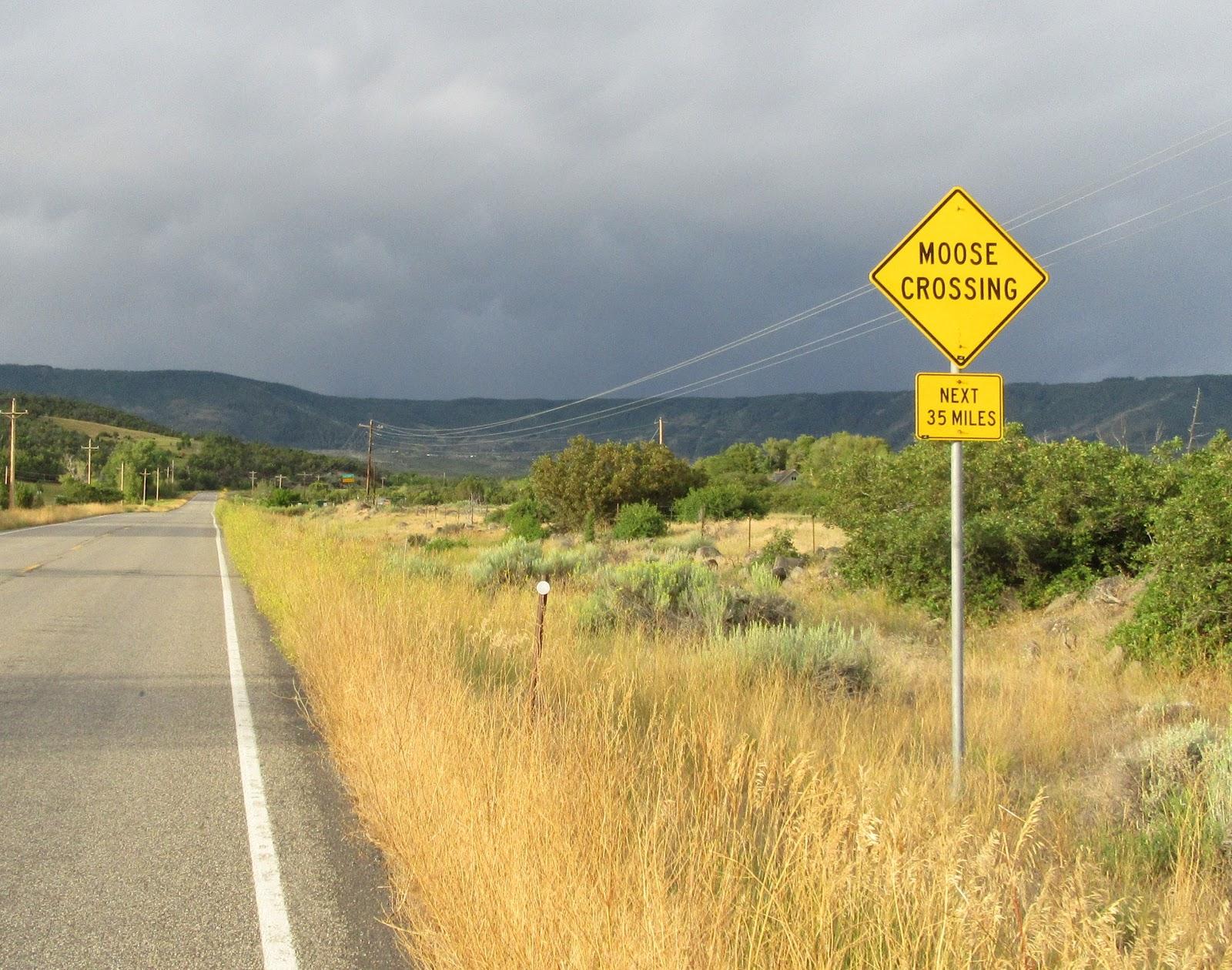 Bicycling Grand Mesa North - Moose Crossing sign