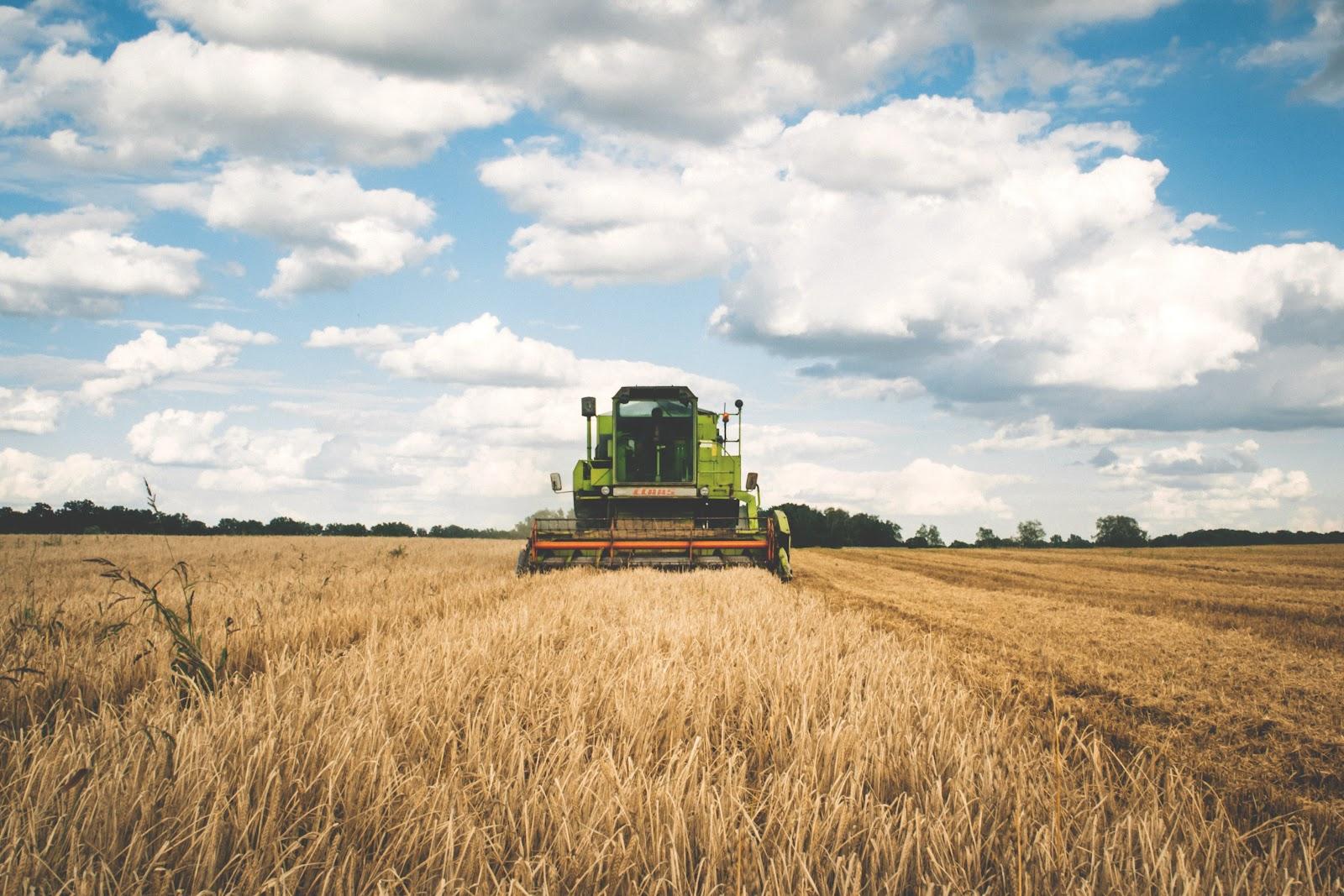 Apesar da queda nos números da indústria, o agronegócio conseguiu segurar o PIB no primeiro trimestre de 2021. (Fonte: Pexels/freestocks.org/Reprodução)
