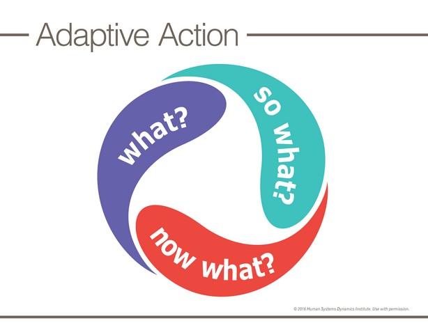 adaptive action graphic