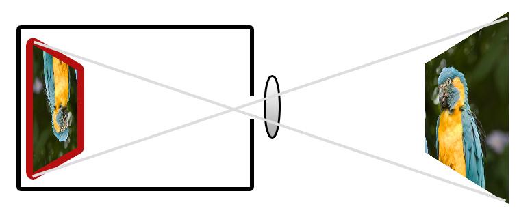 Illustration - Camera capturing an image