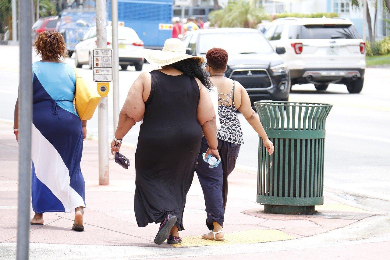 Metade dos brasileiros está acima do peso, e 20% dos adultos são obesos. (Fonte: Pixabay)