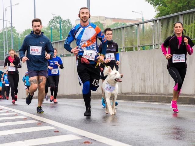 Runners running in a marathon