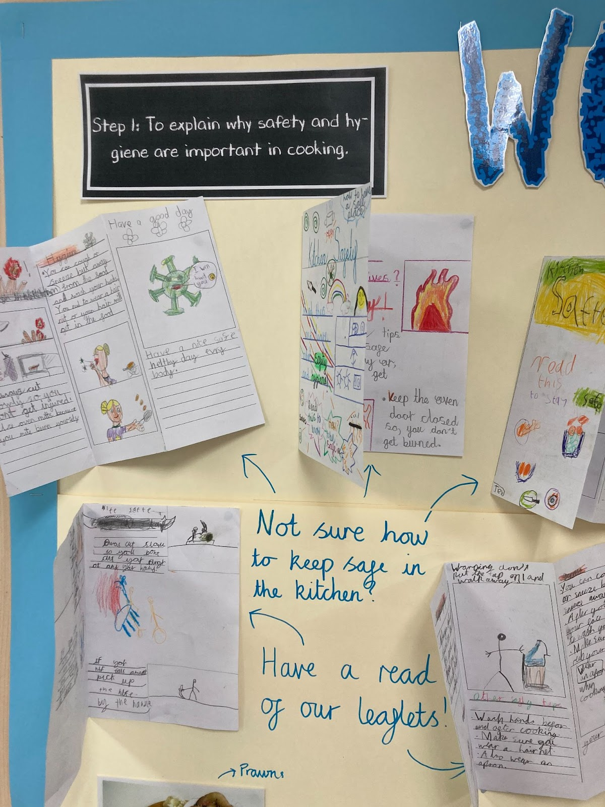 Primary Weekly Highlights: Our Curriculum