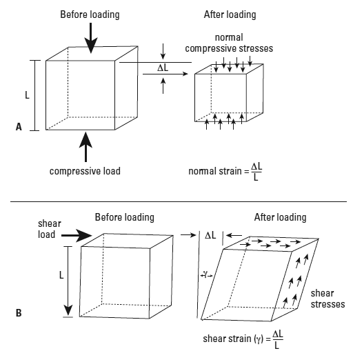A. Loading of bone perpendicular to a surface (compressive or tensile force) induces normal stress and strain within the sample