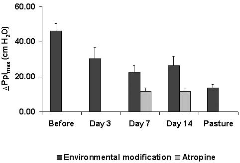Effect of feeding pelleted diet and bedding on shavings on the effort of breathing (DPplmax) in heaves-affected horses.