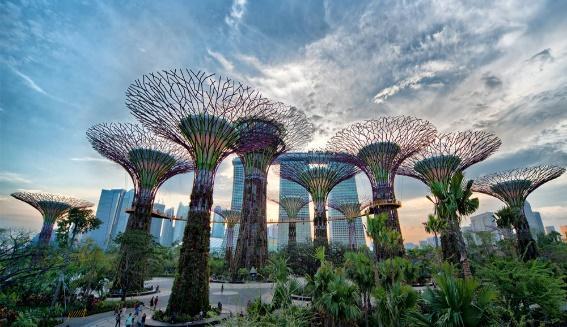 http://www.visaseva.com/wp-content/uploads/2014/06/Gardens-by-the-Bay-Singapore.jpg